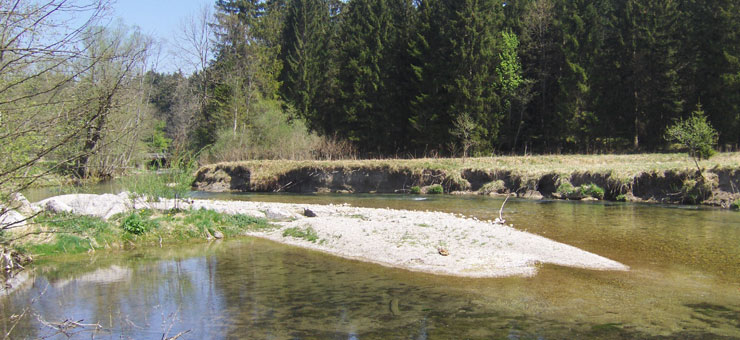 Leitzach